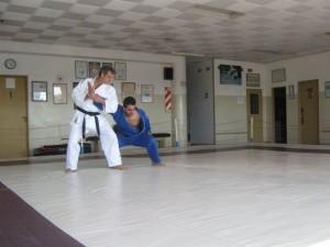 Participantes del seminario desarrollando la Goshin Jitsu .