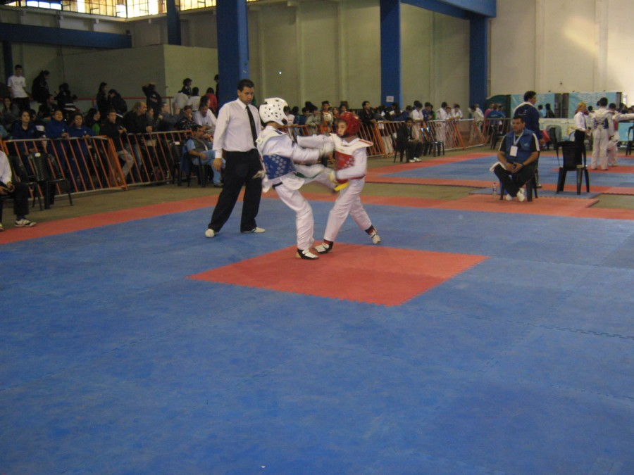 Tae Kwon Do en Plena competencia.